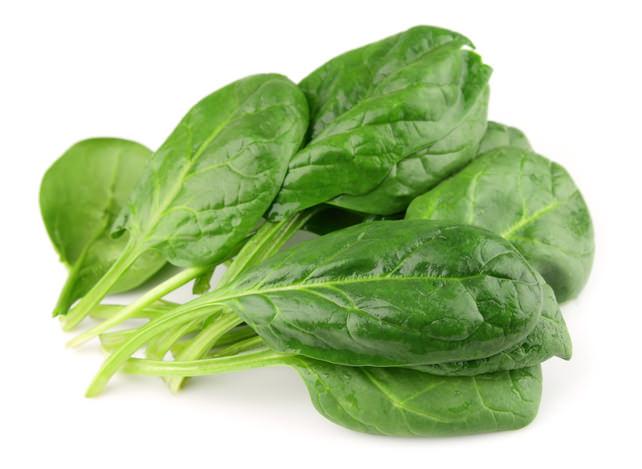 spinat-bündel