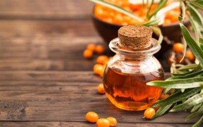 Sanddornöl – Inhaltsstoffe, Wirkung und Anwendungsgebiete