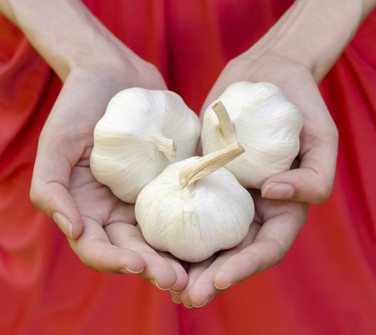 Woman holding three bulbs of garlic in her hands.