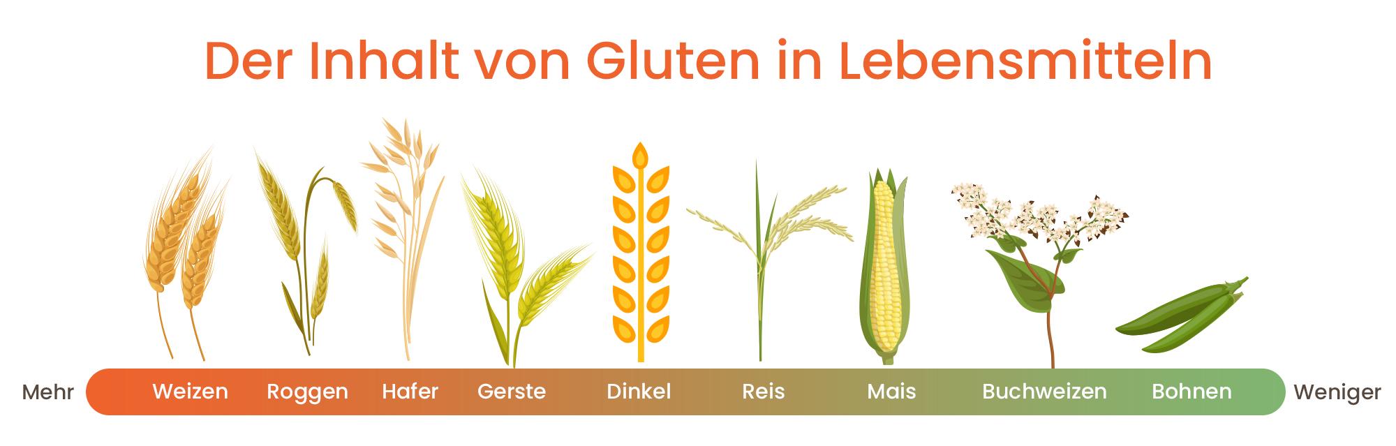 Gluten Infografik