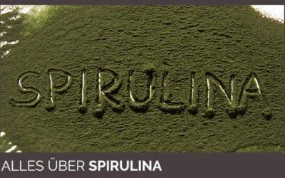 Darum ist Spirulina Pulver gesund