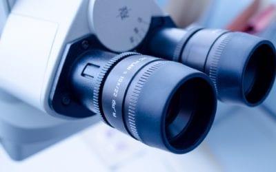 Wieso Makro- und Mikronährstoffe überlebenswichtig sind