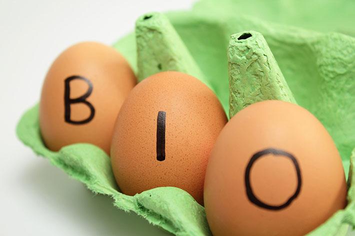 Wenn möglich, dann verwende immer Bio-Eier von freilaufenden Hühnern