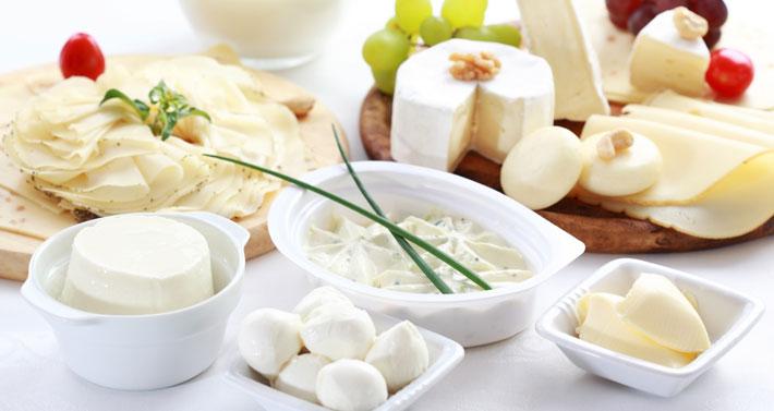 Käse, Sahne und Joghurt sind die perfekten Low Carb Lebensmittel